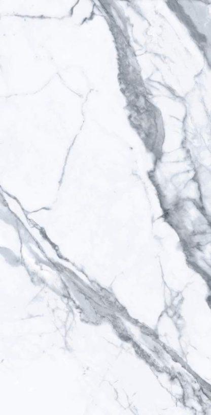 Bianco-Venatino-24x48