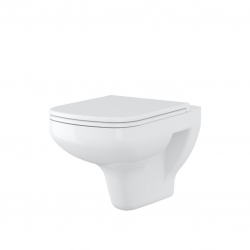 WALL-HUNG TOILET BOWL COLOUR