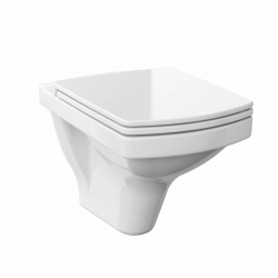 WALL-HUNG TOILET BOWL EASY